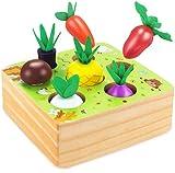 WolinTek Montessori Juguetes Niños Aprendizaje, Juegos Educativos de Granja Infantiles Ejercicio, Juguetes de Madera,Juguetes Bebes 1 Año ,Juguetes educativos Regalo para niños