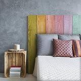 MEGADECOR Cabecero Cama PVC Decorativo Económico Madera Tablas Arcoiris Multicolor Varias Medidas (100 cm x 60 cm)