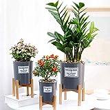 beiyoule Soporte para plantas, soporte de madera para macetas de flores para decoración de interiores y exteriores, moderno (maceta no incluida)