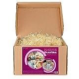 Virutas de madera ideal como material de relleno para embalaje | Paja decorativa para cestas y paquetes de regalos (500 g)