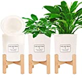 Herefun 3 Moderno Soporte para Macetas+3 Macetas, Soporte para Plantas, Ajustable de Bambú Moderno Soporte para Macetas Soporte para Plantas Madera Soporte de Plantas Expandible por Interior Exterior