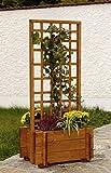 GASPO Jardinera con celosía 'Hofgarten' | Jardinera de pino macizo | jardinera con enrejado de 122 x 55 x 47 cm | macetero de calidad: Hecha en Austria | macetero con enrejado fácil de montar