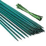 Pllieay 30 Varillas de bambú Verde de 12 Pulgadas con 60 Lazos metálicos Verdes, estaca de Planta Verde, púas Florales, Letrero de Madera para Poste de jardín, Varillas de Planta, estaca de Planta