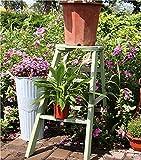 Casetas de Jardin Madera Exterior Cobertizo Resina Casa Armario Escobero Tablones Cabañas Prefabricadas con Puertas de Madera Armarios Leñero Madera Tratada (Ladder)