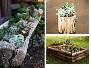maceteros troncos de madera